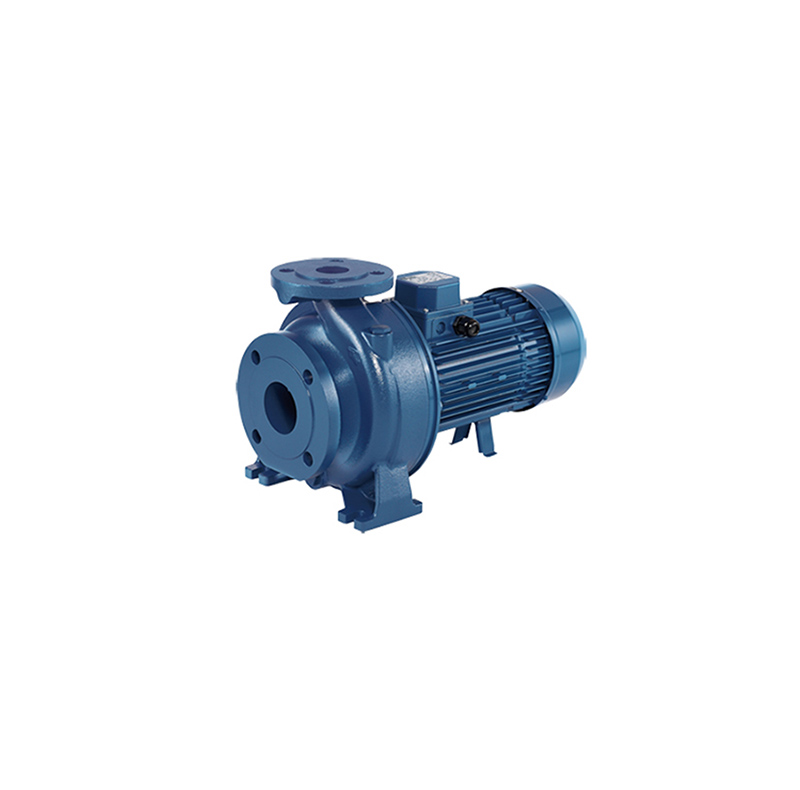 3D - Centrifugal Pump 2 Pole Cast Iron, Extended shaft type